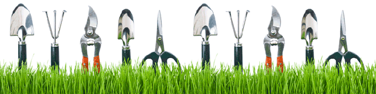 local-records-office-Landscaping-Tools