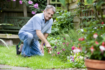 The Secrets to Landscaping and Gardening for Beginners From Professionals